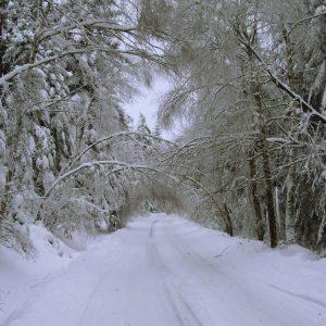 zimą do Nowicy
