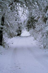 zimą do Trzech Potoków