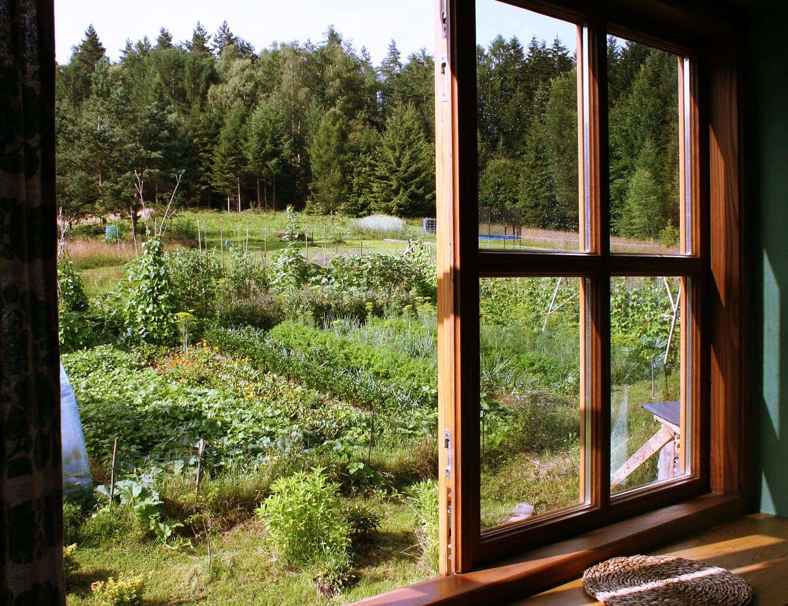 Widok na ogródek